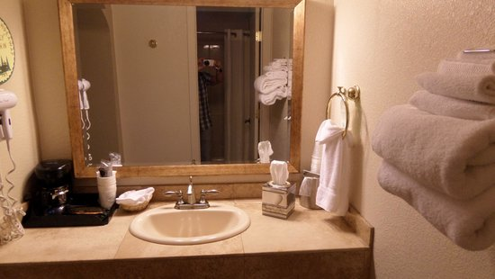 The Lodge On Route 66 : Bagno