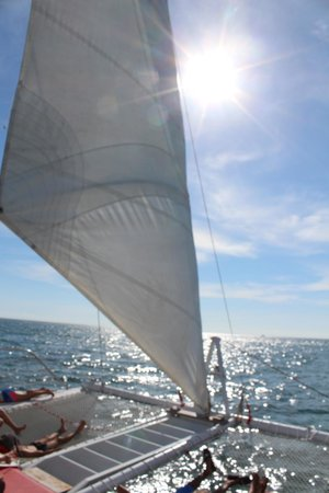 Lookout Cruises: under sail