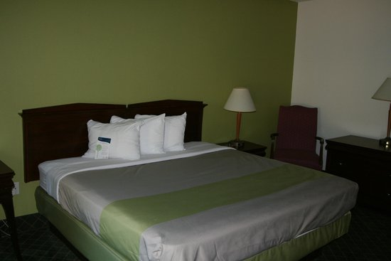 Motel 6 Roanoke, VA: Guest Room