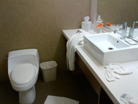 BLVD Hotel & Spa: ¡El Baño de estilo moderno y muy limpio!