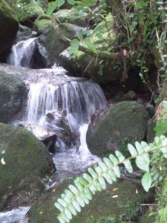 Yoggo Valley: 岩をぬって流れるわき水