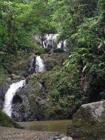 Argyle Waterfall : Argyle Falls