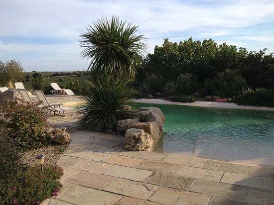 Domaine La Veronique : poolside