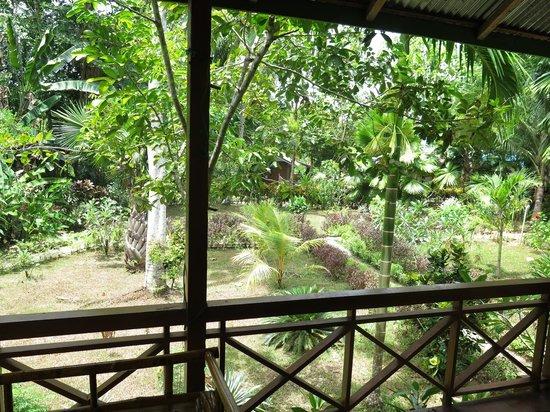 Bunaken Kuskus Resort: Blick aus dem Bungalow in den Park