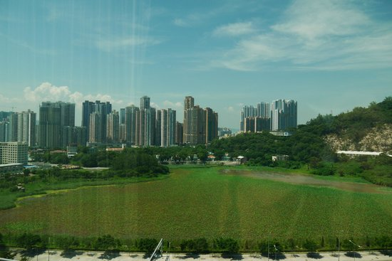 The Venetian Macao Resort Hotel: View from room- Taipa and Macau mainland