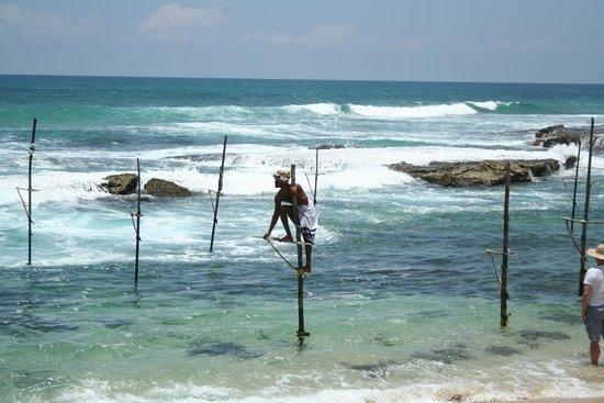 Club Villa: Stick fishing