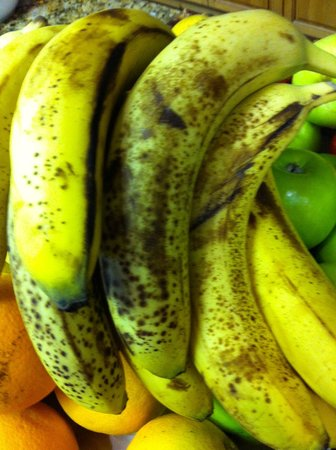 Canmore Rocky Mountain Inn : BANANAS - WOULD YOU EAT THESE?