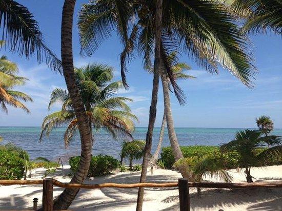 La Perla Del Caribe : View from Villa Sapphire