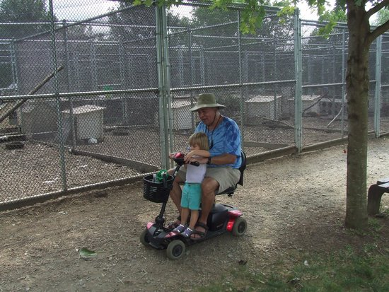 Linvilla Orchards : Scooter friendly