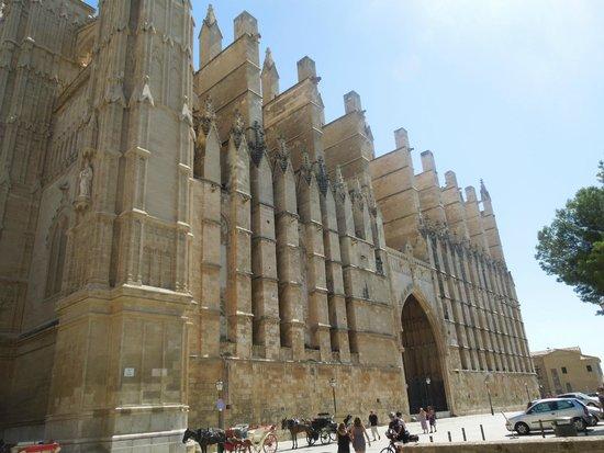 Catedral de Mallorca: veduta laterale