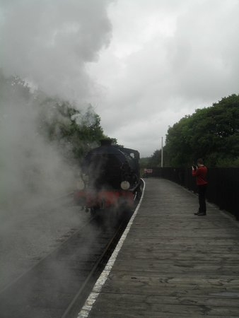 Isle of Wight Steam Railway: Daddy... oh my Daddy