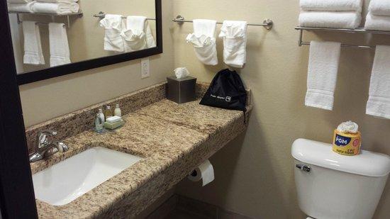 Cobblestone Inn U0026 Suites Fort Dodge, IA: Bathroom