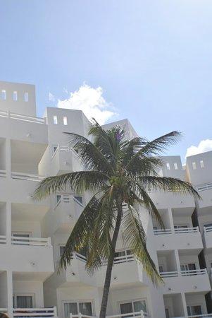 Holiday Inn Cancun Arenas: Palm