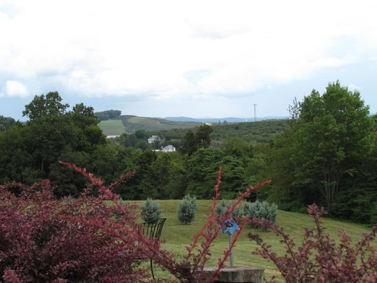 Hauser Estate Winery: Up on the mountain