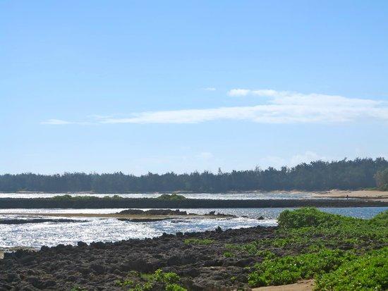 Turtle Bay Resort: beach