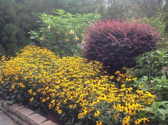 Americus Garden Inn Bed & Breakfast: Some of the backyard gardens