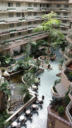 Embassy Suites by Hilton Hotel San Rafael - Marin County / Conference Center: View of lobby from my door.