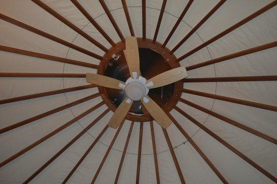 Falling Waters Adventure Resort: Yurt #7