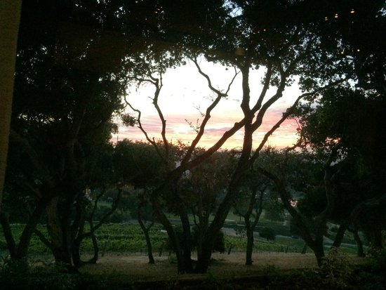 Carmel Valley Ranch: View out to Carmel Valley
