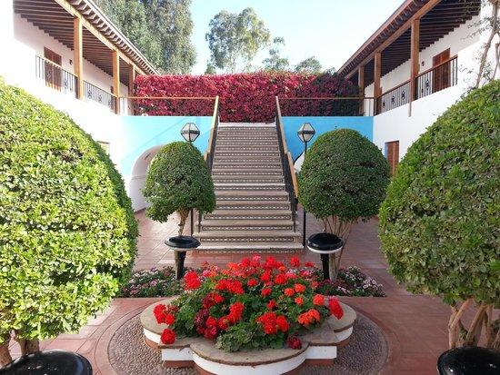 Hotel Las Dunas : Jardines, flores, buganvillas.