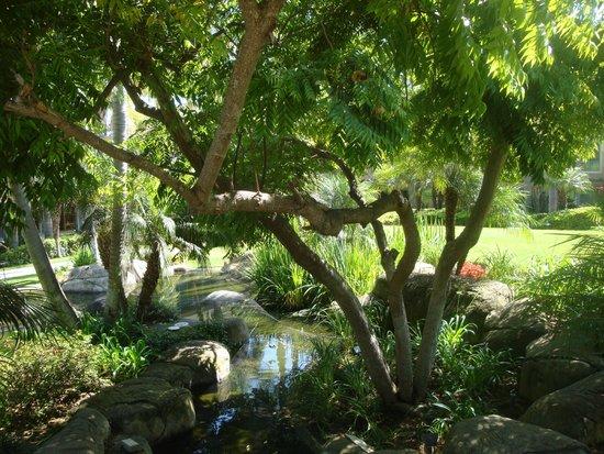 Sheraton La Jolla Hotel: View through the trees