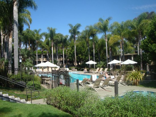 La Jolla Hotels >> More Pool Picture Of Sheraton La Jolla Hotel Tripadvisor