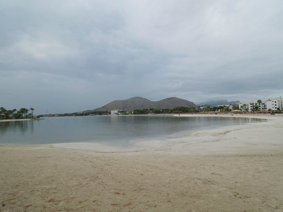 Beach view - Picture of Playa de Alcudia, Port dAlcudia - TripAdvisor