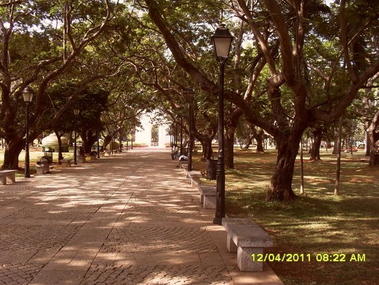 Bharati Government Park : Inside Bharathi Park