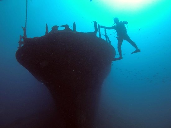 Kaimana Divers: Descending down to the Sea Tiger.