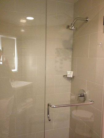 Galleria Park Hotel: Glass Enclosed Shower