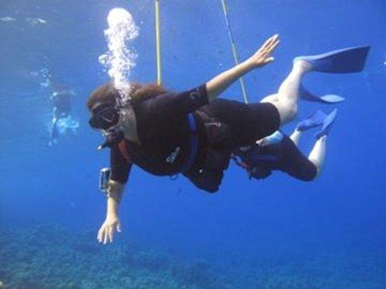 Molokini Crater: Snuba Diving