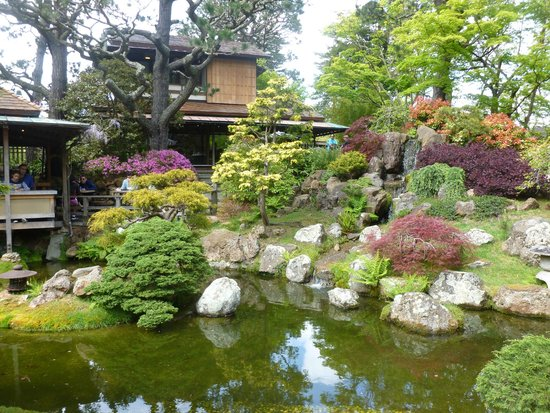 Golden Gate National Recreation Area : Japanese Tea Garden