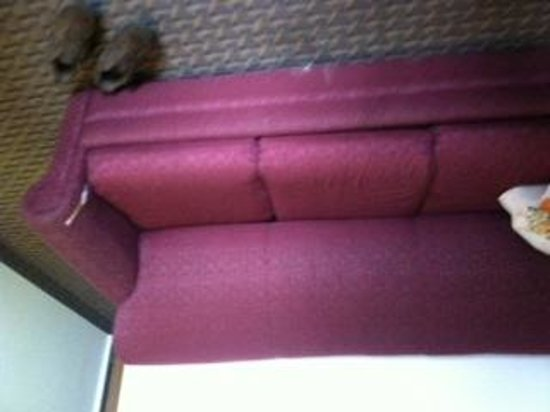 Americas Best Value Inn Hibbing: craigslist ripped couch