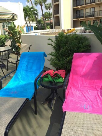 Boca Raton Plaza Hotel and Suites : laying out at the pool