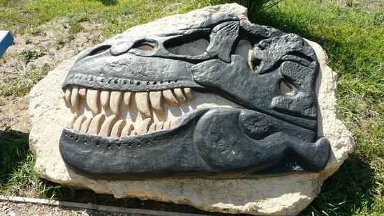 Parco Paleontologico Dinosardo