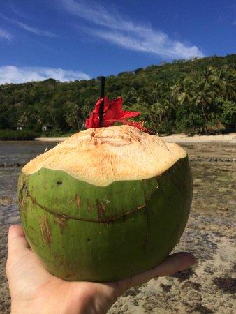 The Remote Resort - Fiji Islands : Welcome Coconut