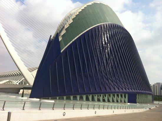 Holiday Inn Express Valencia Ciudad Las Ciencias : l aquaruim