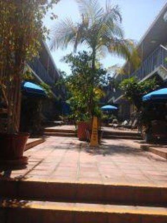 Travelodge Santa Monica: courtyard area
