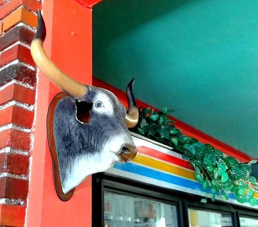 El Lugarcito Restaurant: This bull is crazy -- he's got a hole in the head.