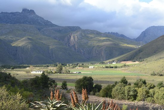 View of Swartberg from Cottage Chenin Blanc