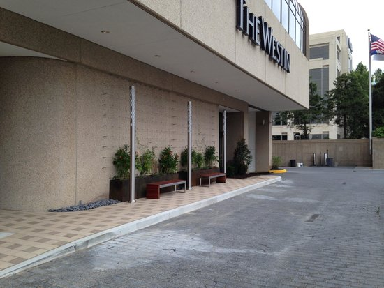 The Westin Crystal City: New are the benches and travelling foilage.