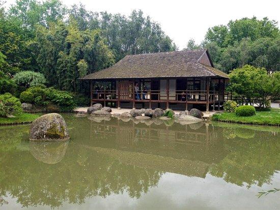 Jardin japonais de toulouse picture of jardin japonais for Jardin 87