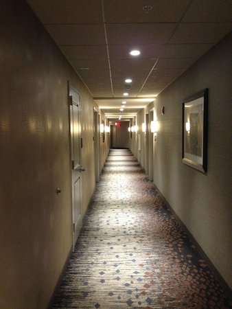 Hampton Inn & Suites Portsmouth Downtown : hallway