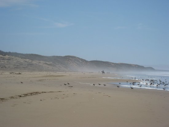 Montana de Oro State Park : Montana Del Oro, The Sand Spit, a 7 mile beach that forms Moro Bay