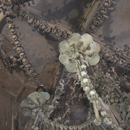 Pelvic bone chandelier picture of ossuary the cemetery church ossuary the cemetery church pelvic bone chandelier aloadofball Image collections