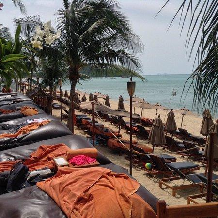 Anantara Bophut Koh Samui Resort: sunbathing
