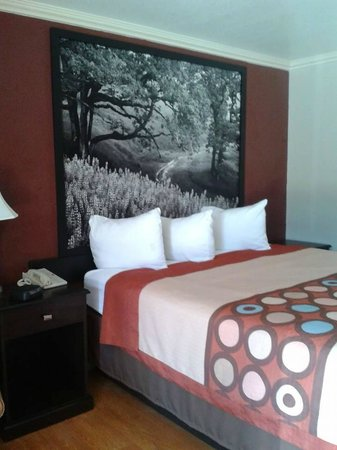 Super 8 King City: Beds have terrific photo panels over them.
