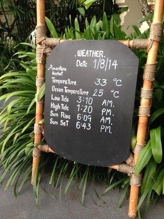 Anantara Bophut Koh Samui Resort: daily pool information