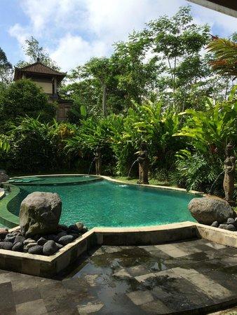 Villa Wastra: Fantastic Pool!