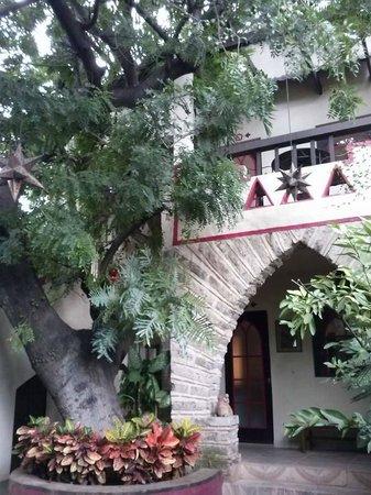 Hotel Casa Blanca: patio